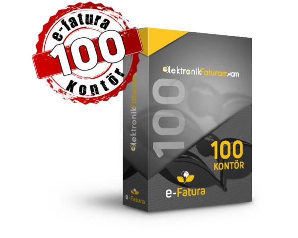 e-fatura 100 kontor fiyatı