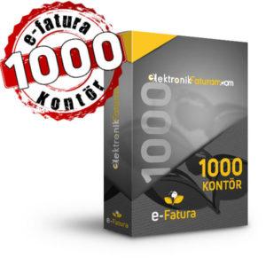 e-fatura 1000 kontor