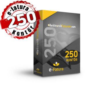 e-fatura 250 kontor fiyatı